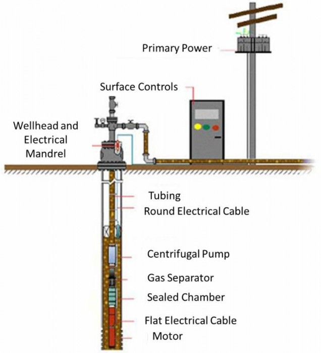 national association of royalty owners louisiana chapter electric submersible pump cross section motor assembly the motor assembly is used to power the pumps they are offered in a variety of diameters, horsepower ratings, and operating ranges